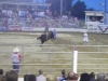 cowtown_rodeo_3_oct19_156pm