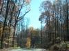 back_roads_nov12_903am